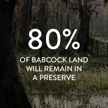 90% of Babcock Ranch land will be preserved