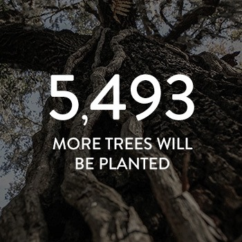 5,493 more trees will be planted
