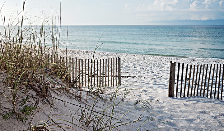 Considering Moving to Florida? Things to Know About Moving to Florida's Gulf Coast