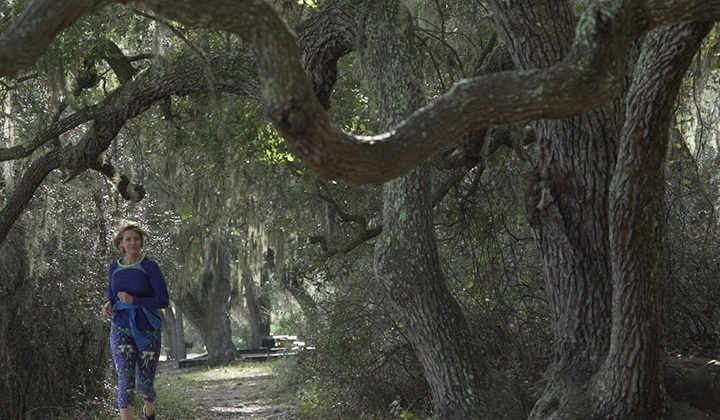 Top Five Things to Look for on a Nature Hike in Florida